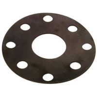 Rubber Gasket Np16 F/Face Id 2″ | FTM