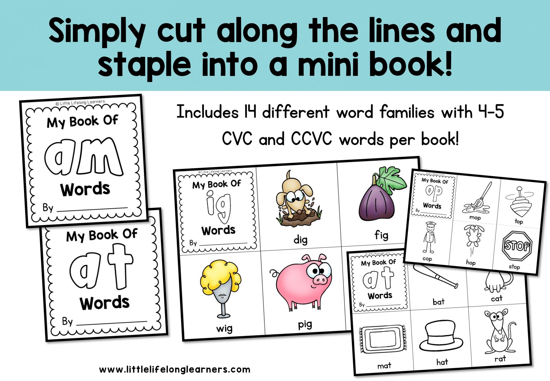Word Family And Rhyming Word Books