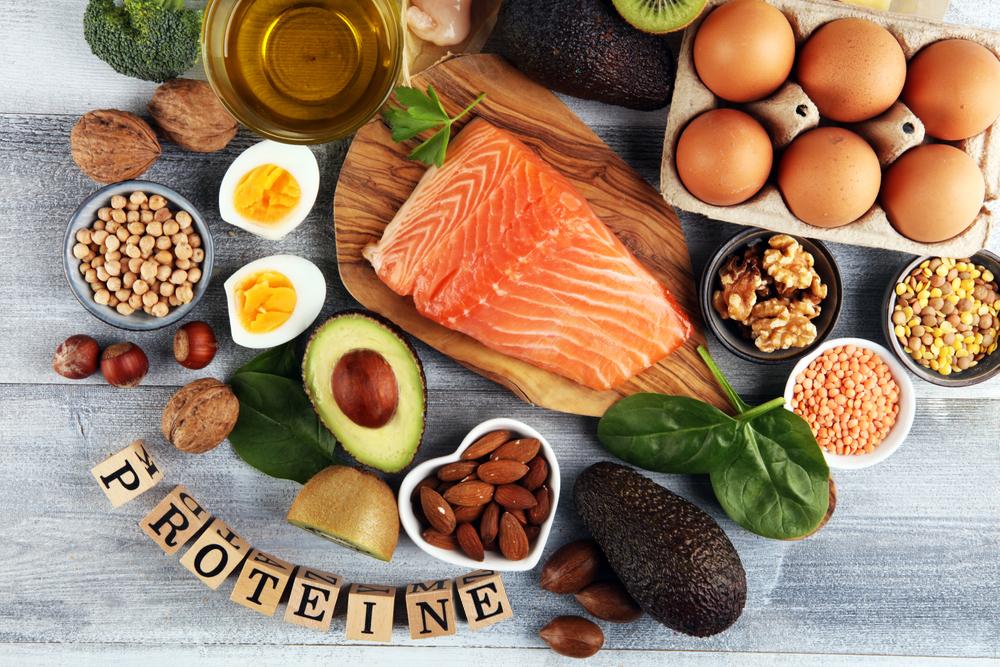 les protéines pour brûler plus de calories