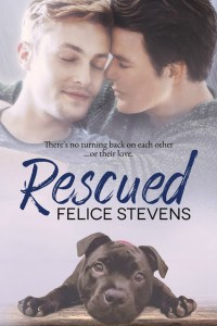 Rescued Ebook Cover
