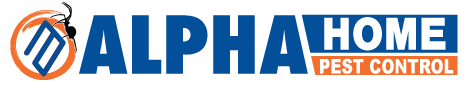 100% Guaranteed Pest Control Boise | Alpha Home Pest Control
