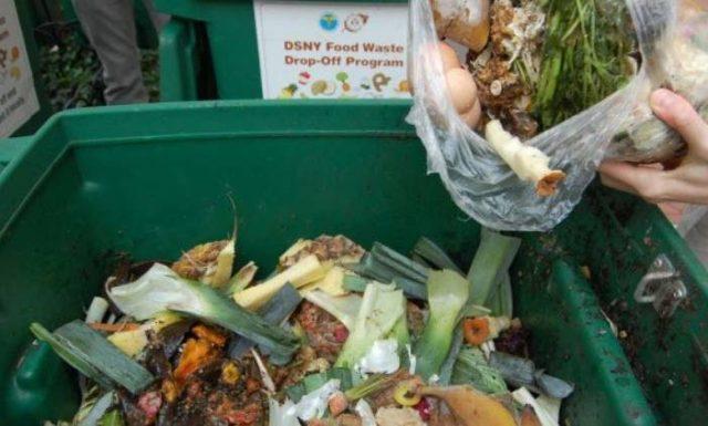 Πόσο φαγητό καταλήγει καθημερινά στα σκουπίδια-Οι αριθμοί σοκάρουν   Alpha Πάτρας