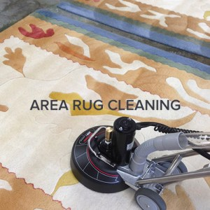 Seattle Area Rug Cleaning