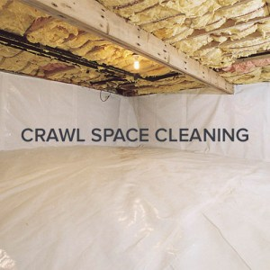 Seattle Crawl Space Cleaning