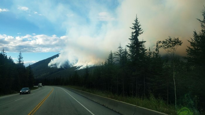 Fire season in Rogers Pass
