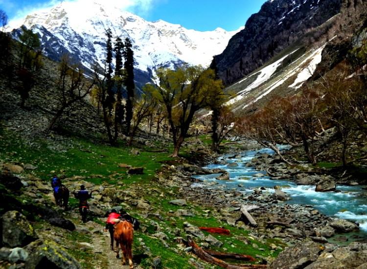 Sikwais Trail