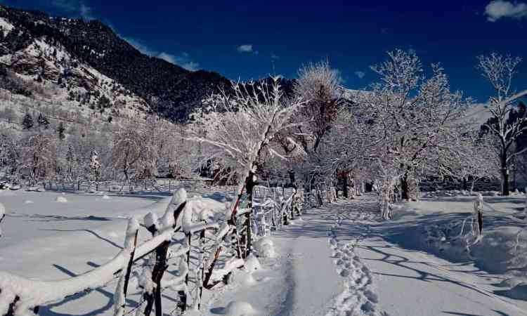 Winter Sightseeing in Pahalgam