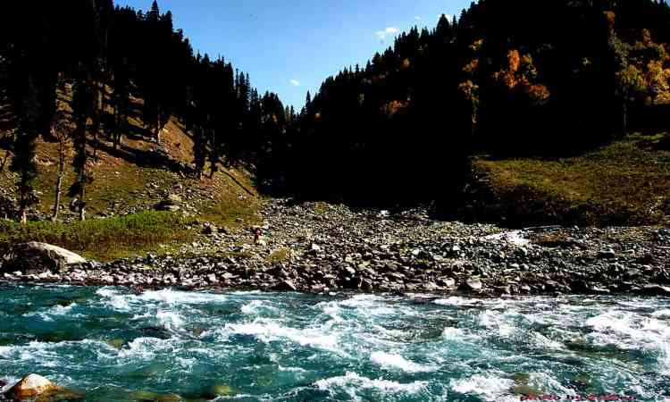 Kargil tour package