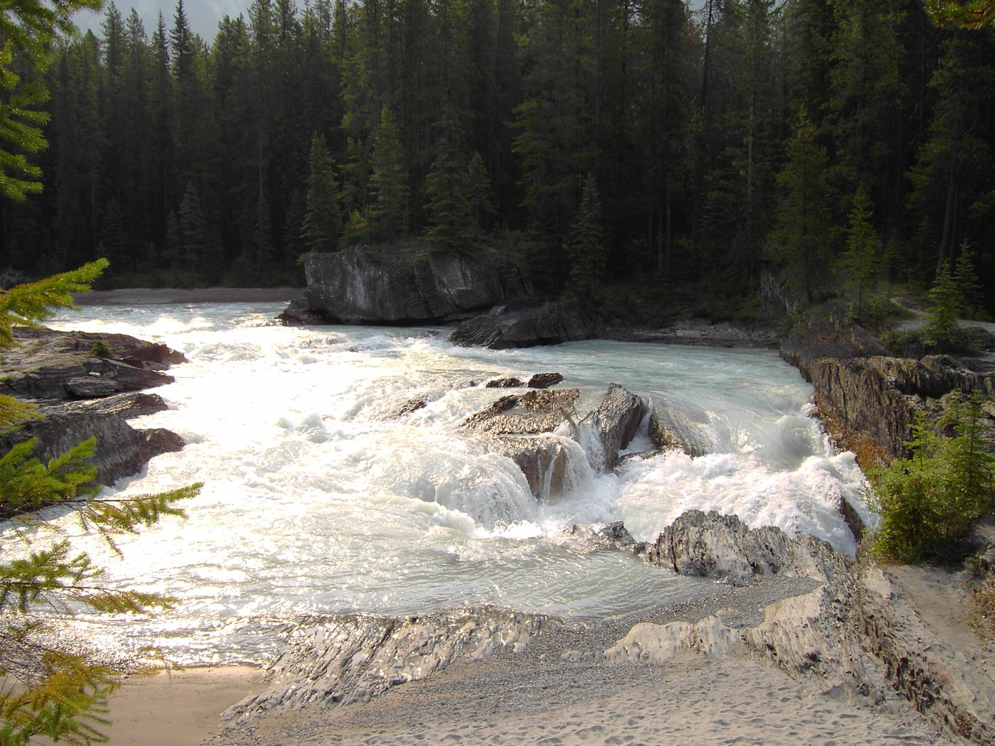 prepare for your Kicking Horse River Rafting Trip