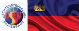LIECHTEN LOGO FLAG
