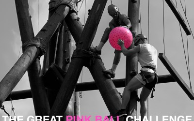 The Pink Ball Challenge – Programming 301 for Challenge Courses