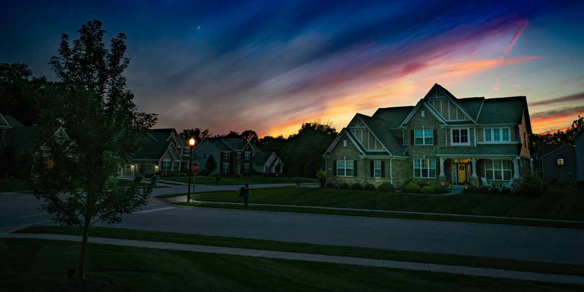 A suburban neighborhood at sunset with a young tree in the foreground
