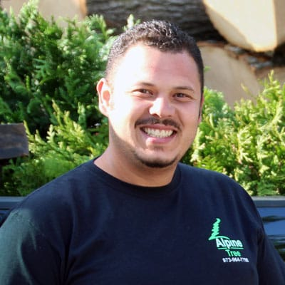 Juan Gonzalez, Mechanic/Bucket Truck Operator with Alpine Tree in Morristown, NJ