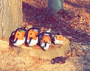 4 chainsaws sitting on a tree stump