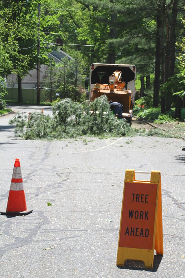 Alpine Tree chipper and truck in the road with safety barriers
