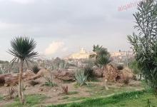 صورة حديقة الفسطاط