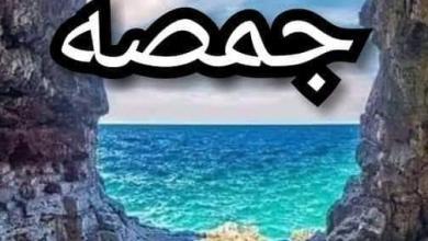 صورة طوف وشوف من كل اصل حكاية  جمصه