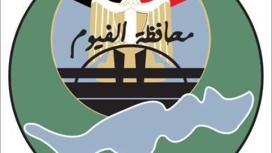 صورة محافظة الفيوم: تحديد سعر قنطار القطن لموسم 2021 بسعر 3865 جنيهاً بعد مزايدة علنية