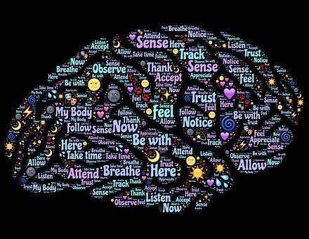 Tendencias: Neurodidáctica, optimizar el aprendizaje y el desarrollo del talento
