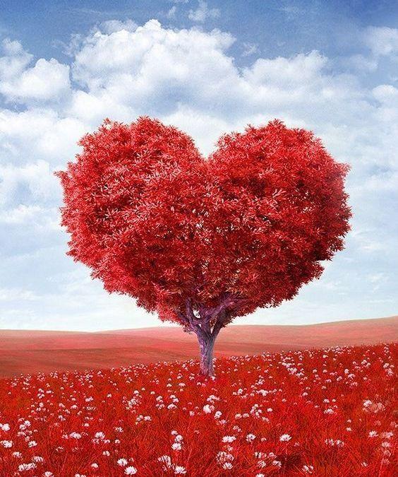 Una Pedagogía del Amor para conquistar el Talento