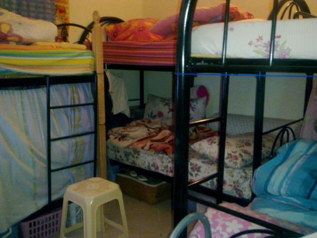 Bachelors In Dubai Warned Not To Rent Bed Space Al Rasub