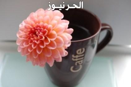 بيسيات صباح الخير اجمل بيسيات لتويتر