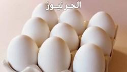 تفسير حلم البيض في المنام للعزباء والمتزوجة والحامل