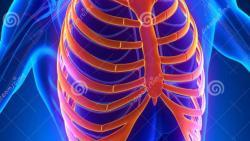 الم في وسط القفص الصدري ماعلاجه