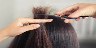 تفسير حلم قص الشعر الطويل في المنام