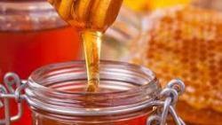 تفسير حلم العسل الأسود في المنام