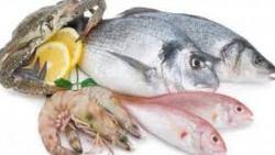 تفسير حلم شراء السمك في المنام