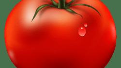 تفسير حلم تقطيع الطماطم البندورة بالسكين في المنام
