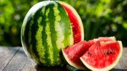تفسير حلم البطيخ الاخضر في المنام