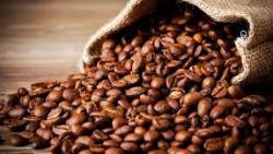 تفسير حلم حبوب القهوة في المنام