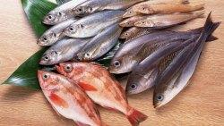 تفسير أكل السمك النيئ في المنام