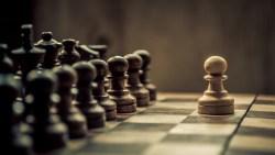 تفسير حلم حصان الشطرنج في المنام