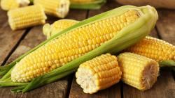 تفسير أكل الذرة المشوي في المنام