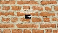 تفسير حلم الحائط المتشقق في المنام