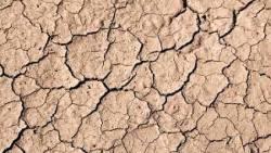 تفسير حلم الجفاف لابن سيرين في المنام