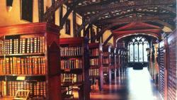 تفسير حلم الكتاب المفتوح في المكتبة في المنام