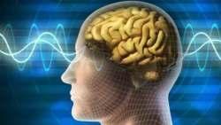 تفسير حلم خروج الدماغ من الرأس في المنام