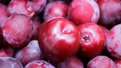 تفسير حلم الفاكهة الفاسدة في المنام