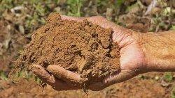 تفسير حلم الطين والماء في المنام