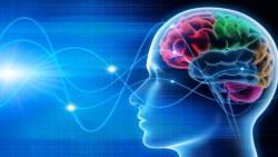 دكتور حسن الراوياخصائي مخ واعصاب بالرياض