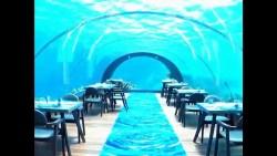 مطعم بخاري لؤلؤة الحمراء في المملكة