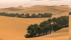 تفسير حلم الضياع في الصحراء بالمنام