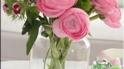 تفسير رؤية قطف الورد في المنام للعزباء