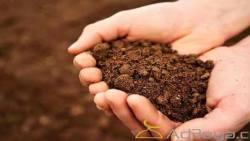 تفسير حلم الميت يحفر التراب في المنام