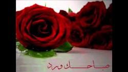 تفسير حلم الورد الوردي في المنام