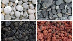 تفسير حلم صخور البحر للعزباء في المنام